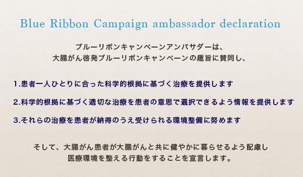 BRC ambassador declaration